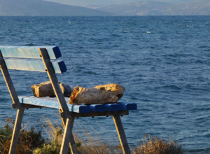 Prices in Croatia: Two Real Budgets from Travels in Split