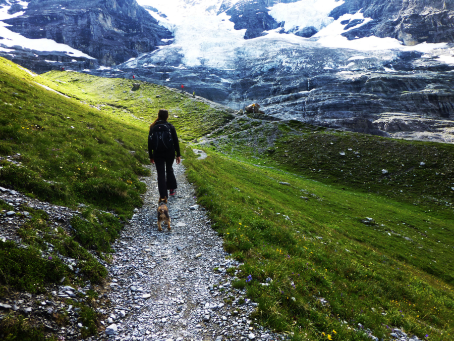 Hiking the Alps: How My Gear Held Up