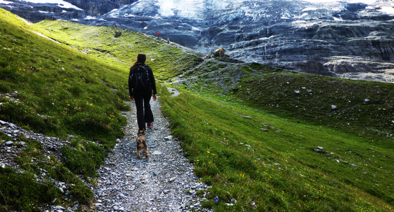How I Got Swiss Residency (Without Getting Married, Going Back to School, or Getting a Job)