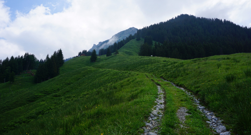 Hiking the Alps: To the top of Schynige Platte