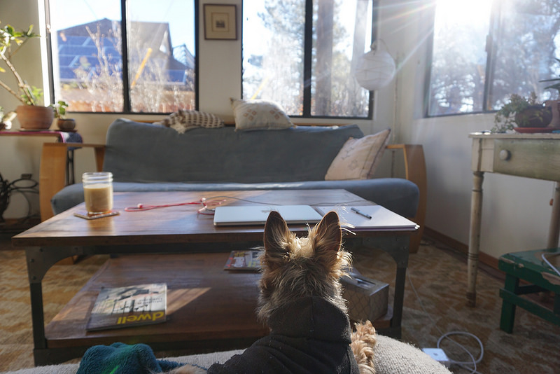 A Day in the Life of a Lady Nomad, Arizona Edition
