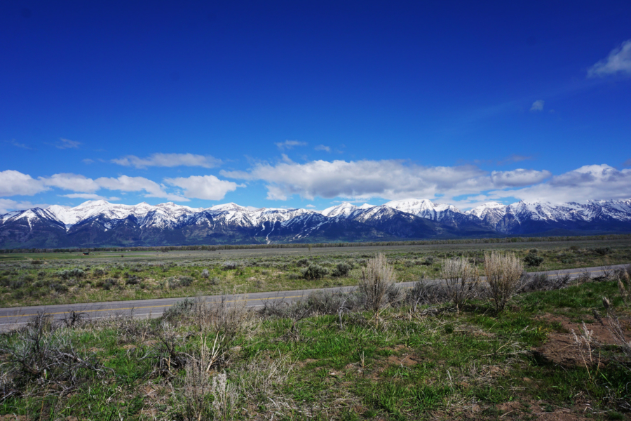 Ask a Local: What Should I Do/See/Eat in Jackson, Wyoming?