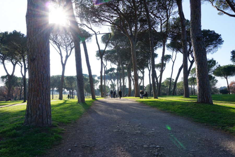 Winter in Rome: On Enjoying Cities But Definitely Not Being City People