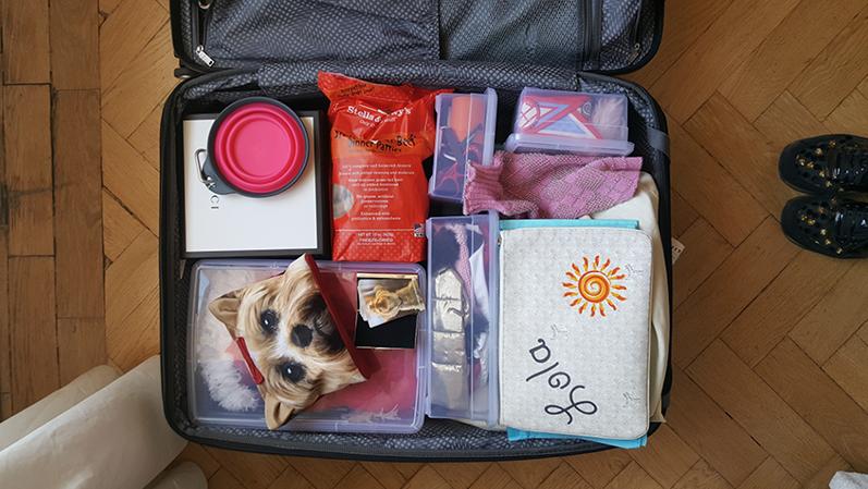 Lola's suitcase