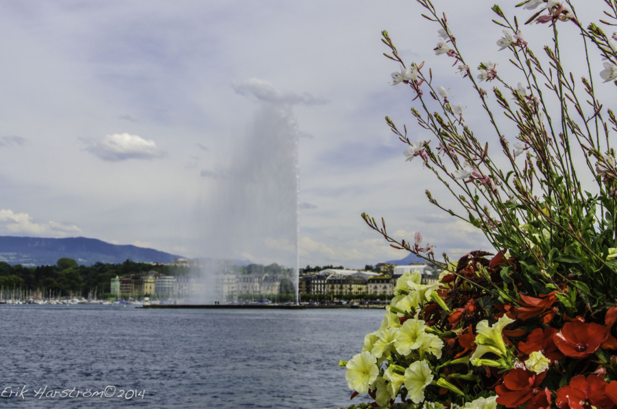 Ask a Local: What Should I Do/See/Eat in Geneva, Switzerland?