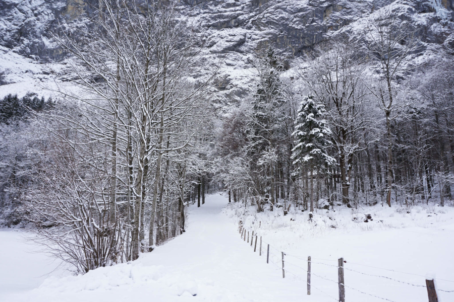A Snowy Day in Lauterbrunnen, Switzerland