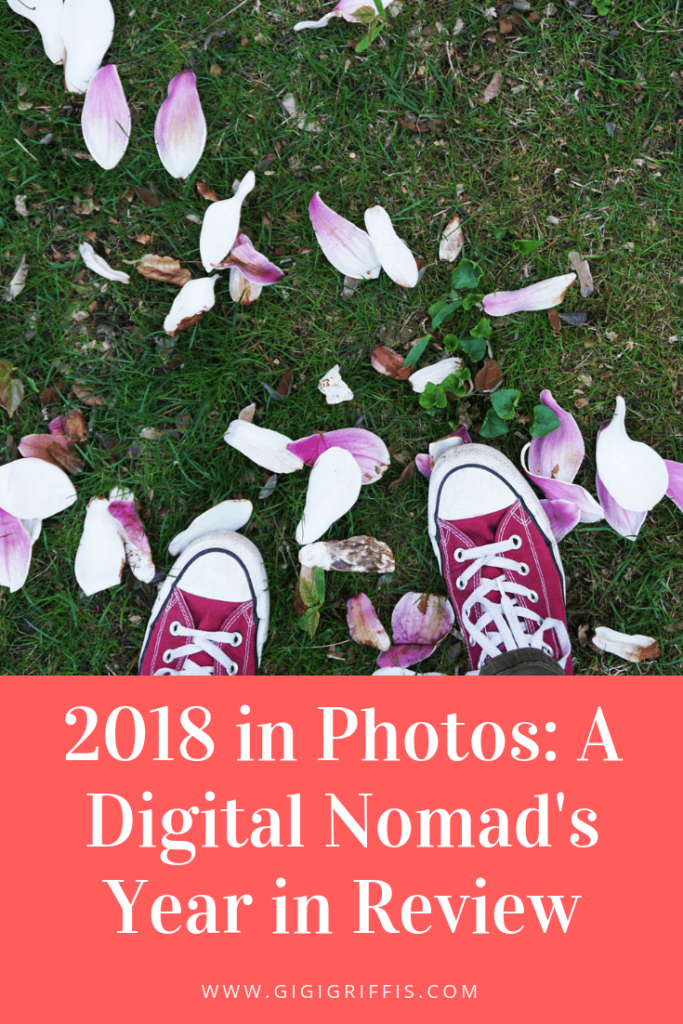 A digital nomad's year in review