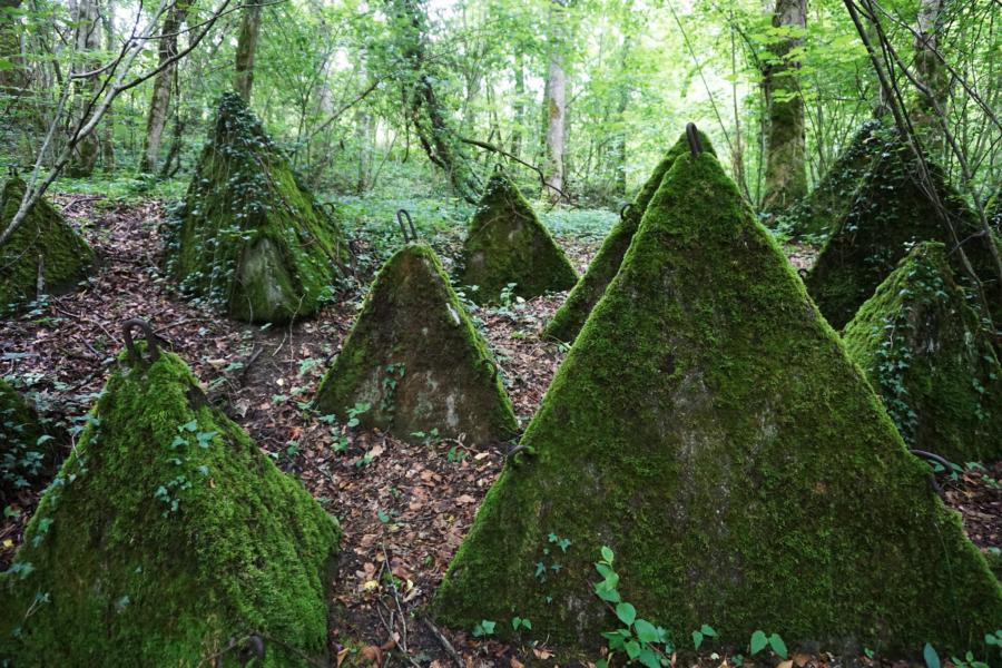 Hiking Switzerland: Sentier des Toblerones