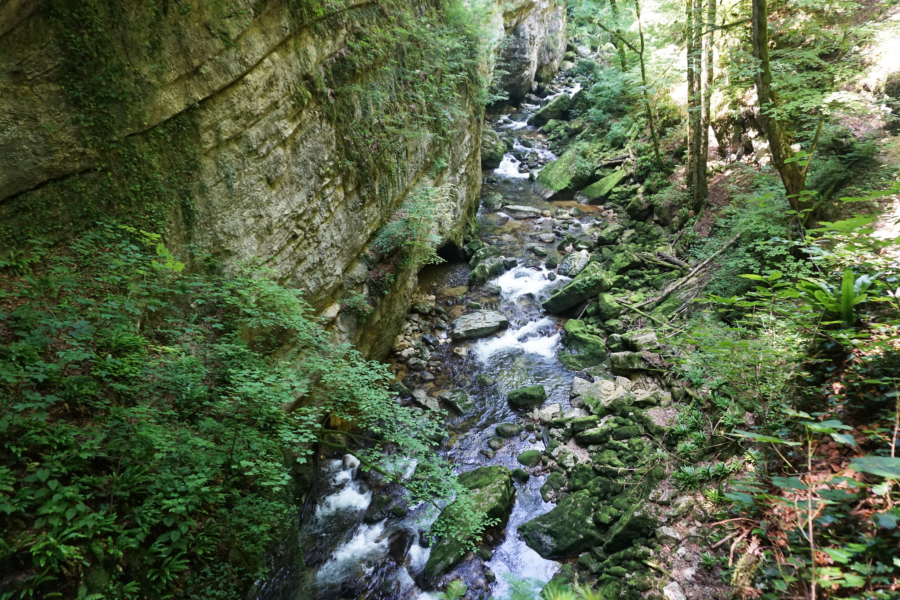 Hiking in Switzerland: Gorges de L'Areuse