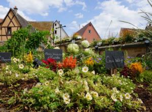 Walking France: Wintzenheim to Eguisheim (Alsace)