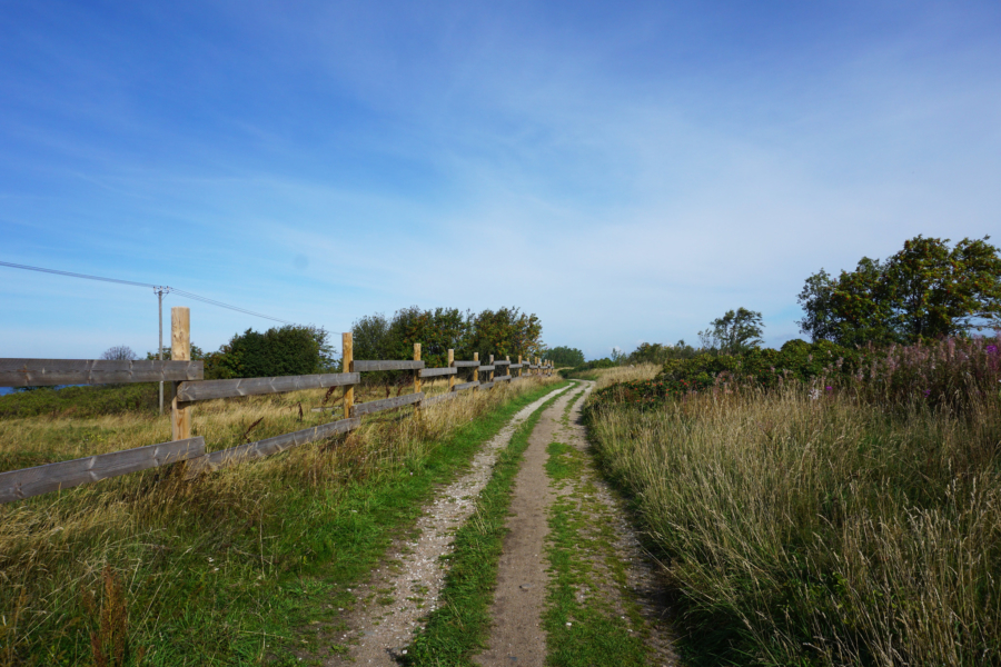 Hiking Estonia: Tallinn's Paljassaare Hoiuala
